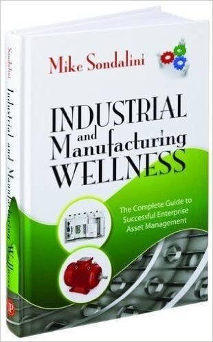 The Industrial and Manufacturing Wellness Book explains IONICS Process 2: Business Risk Rating for Equipment Criticality