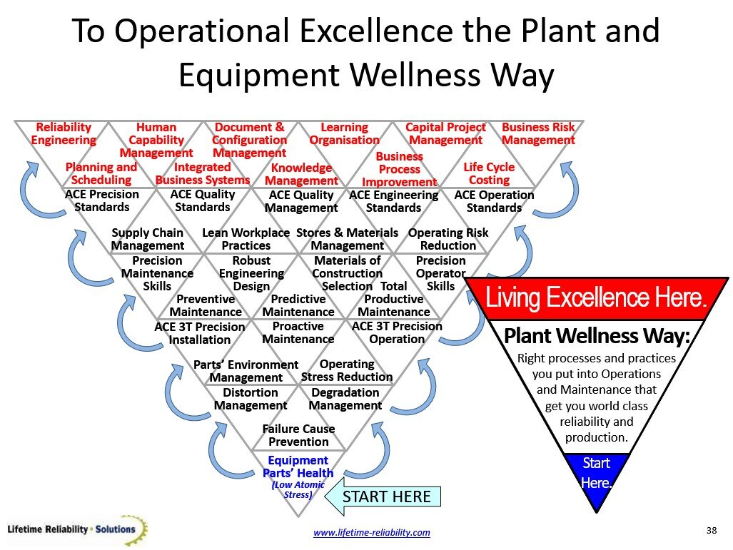 Plant Wellness Way Stress-to-Process EAM System Model