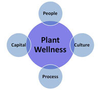 The plant wellness way EAM system elements - people, processes, culture and capital